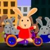Carrera de conejos