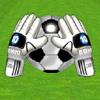 Salva la pelota