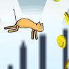 Pelea de gatos salvajes