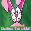 Visitar el conejo